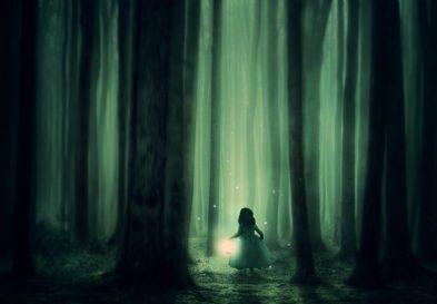 Des Forêts, Jeune Fille, Arbres, Brouillard, Lanterne